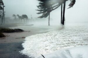 strong winds from storm affecting seashore and trees